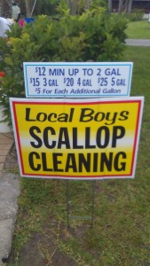 homosassa scallop charter cleaning