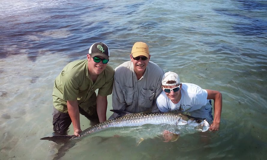tarpon fishing charters tampa