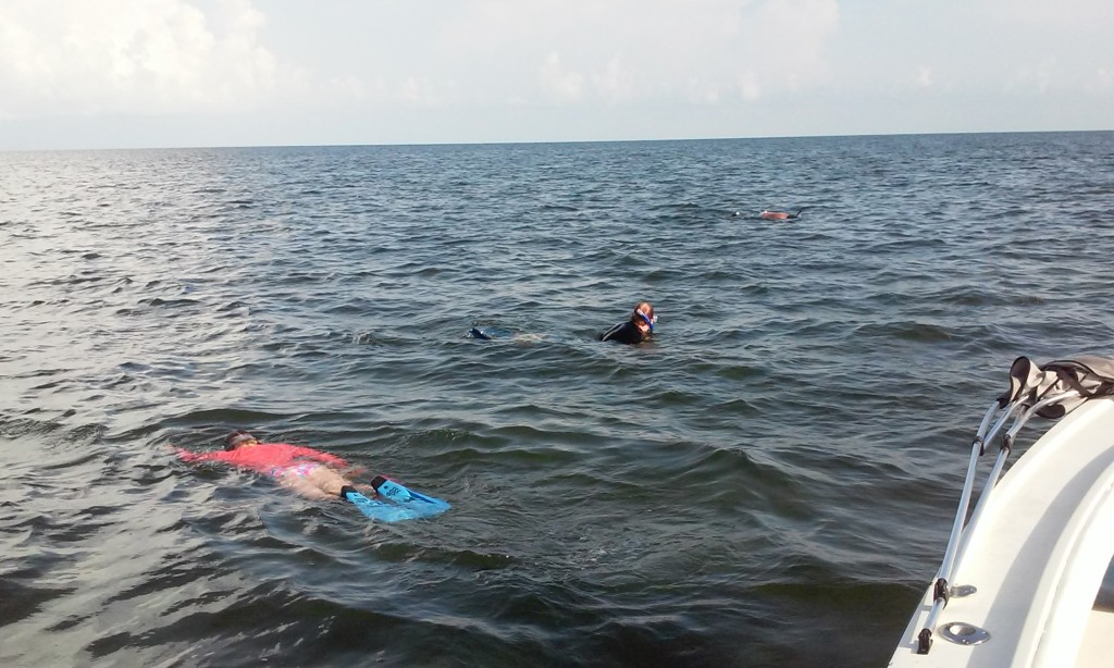 scalloping charter trips