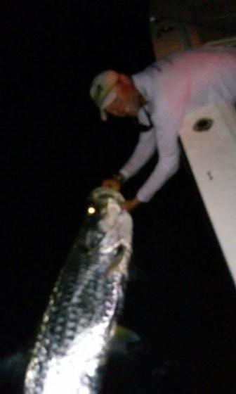 Tampa Tarpon fishing charters trip