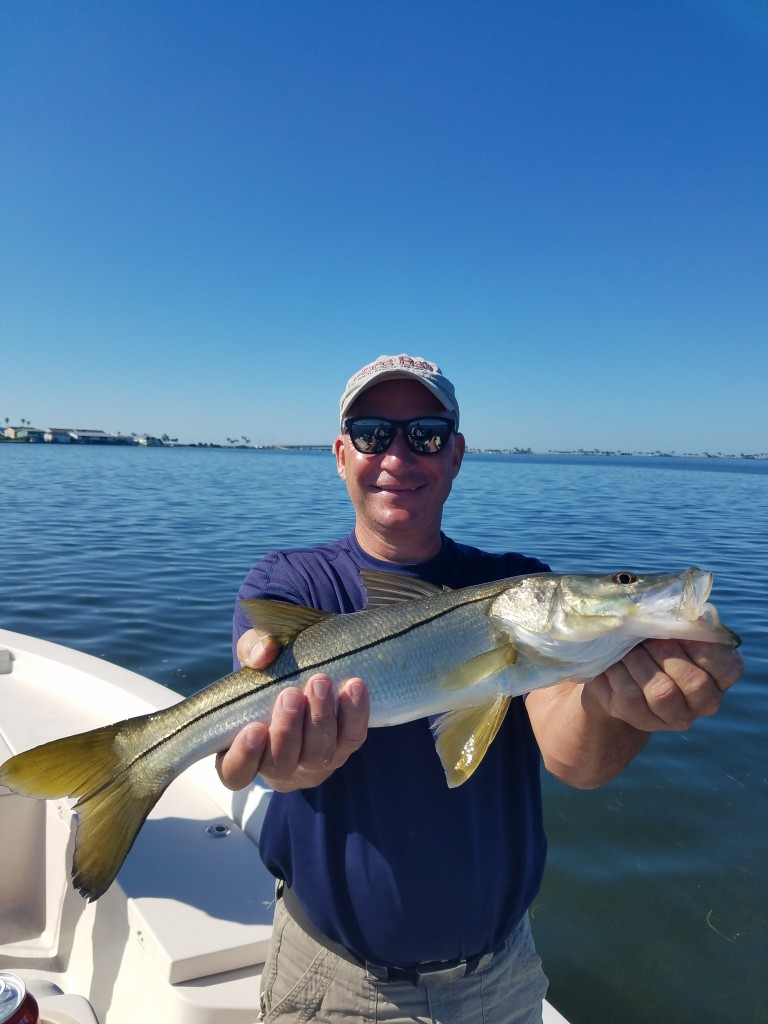 Kev snook on a snook caught near seminole boat ramp