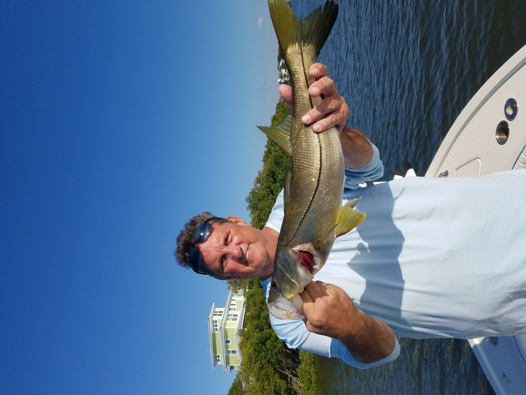 Palm harbor snook fishing charter