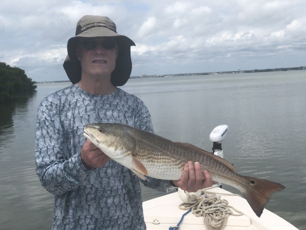 redfish guide and captains dunedin clearwater