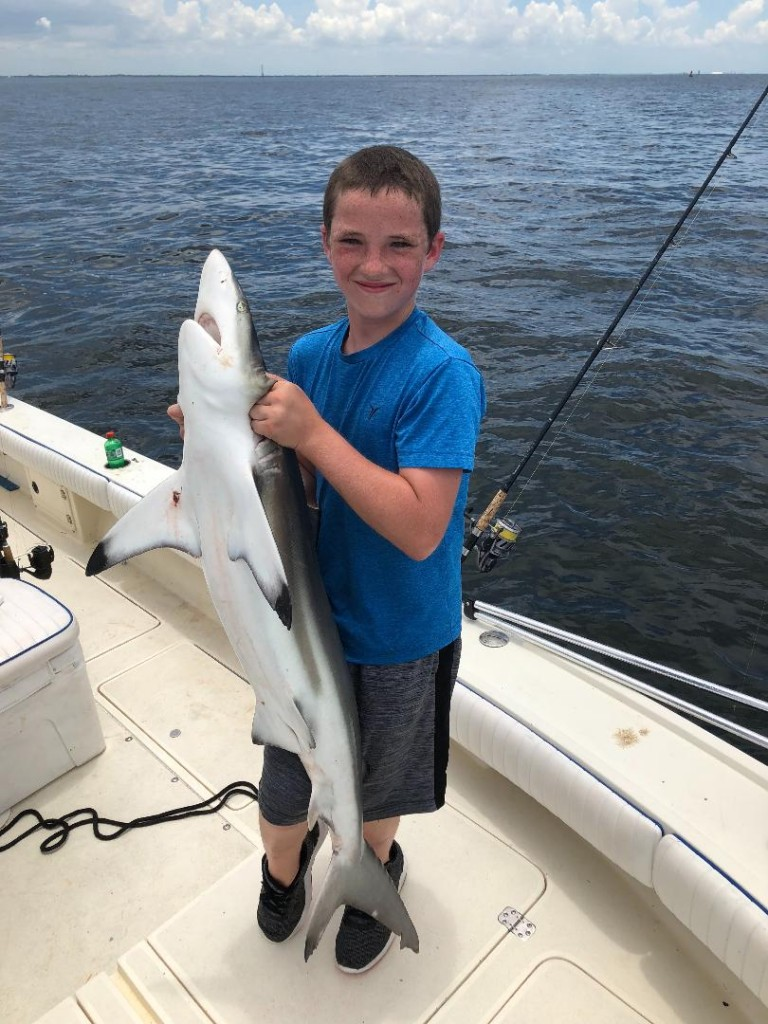 Shark Fishing Charters Clearwater