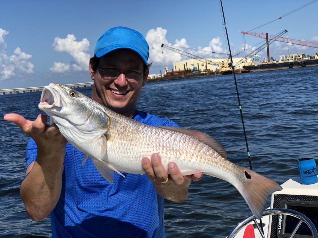 Redfish caught fishing trip safety harbor