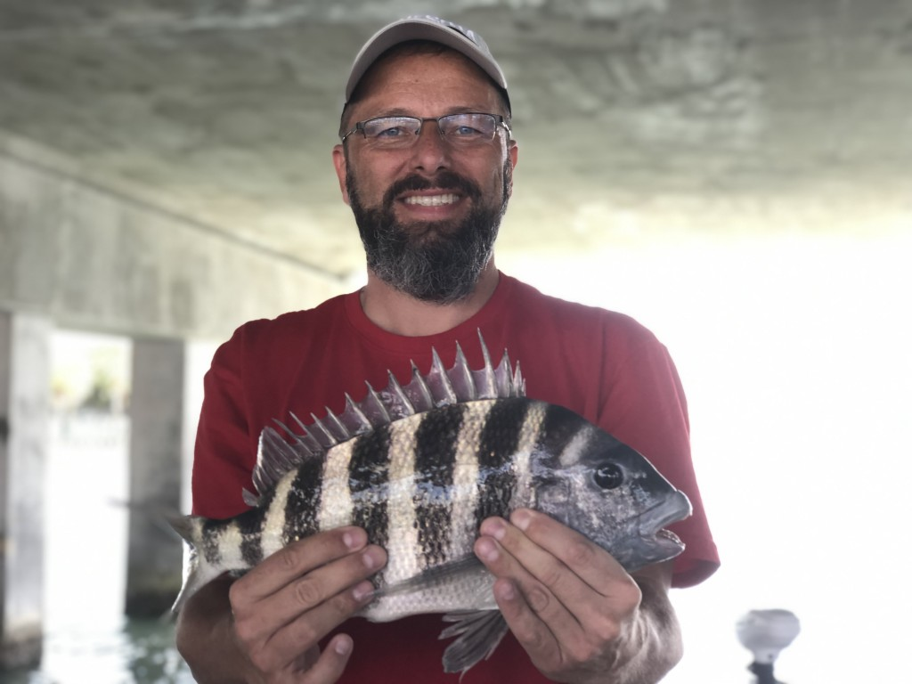 sheepshead fishing indian rocks beach fishing charter
