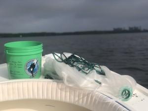 Humpback Cast net Tarmp fishing charters