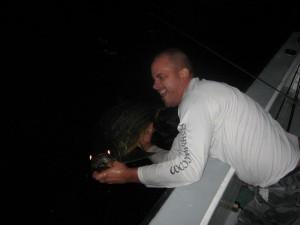 night tarpon fishing charter tampa