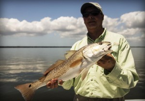 tampa fishing charter guide