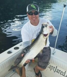 Tampa bay Tarpon Fishing