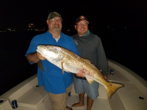 Huge redfish caught with Capt.Jared on a night fishing charter out of clearwater beach florida