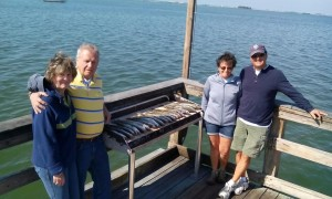 tampa clearwater fishing charters