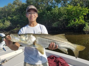 Joey with big snook caught on a safety harbor Fishing charter
