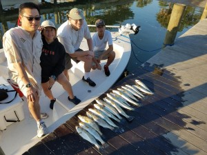 Mirdanys withs the limit of trout caught near saftey harbor resort and spa