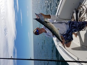 clearwater beach charter guide